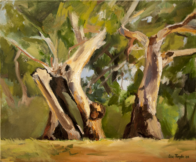 Lise Temple - Late Afternoon, Burra Gorge - Oil - $1200