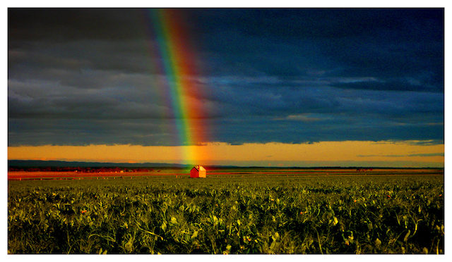 Rainbow Pt Augasta Limited edition 1/200 Size: Price: Price: 430 x 760 mm $450 fine art print $725 frame included